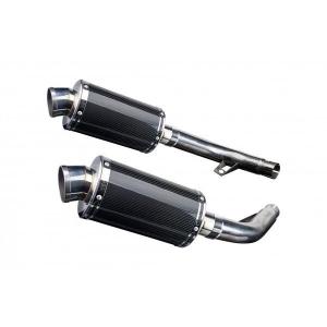 Delkevic slip-on kit Oval Carbon 225mm - CBF1000 (2006-2011)