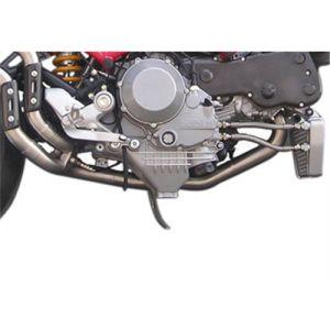 Marving Katvervanger RVS voor Ducati Monster S4 /R/RS