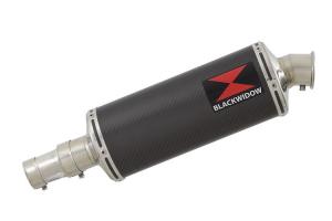 BWE Slip-On Carbon Ovaal 300mm voor R 1150 Rockster 2000 2001 2002 2003 2004